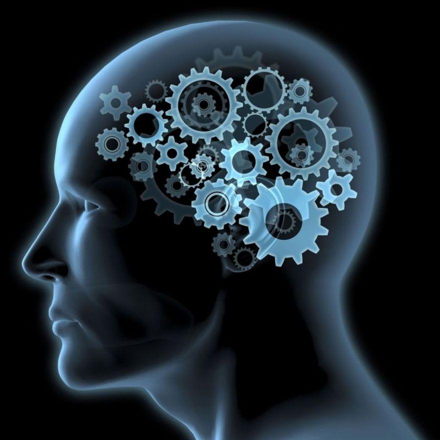 Intelligenze multiple, creatività e abilità cognitive
